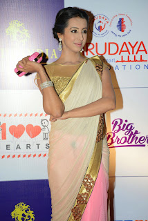 Actress Sanjana Latest Pictures in Saree at CCL Charity Dinner  26
