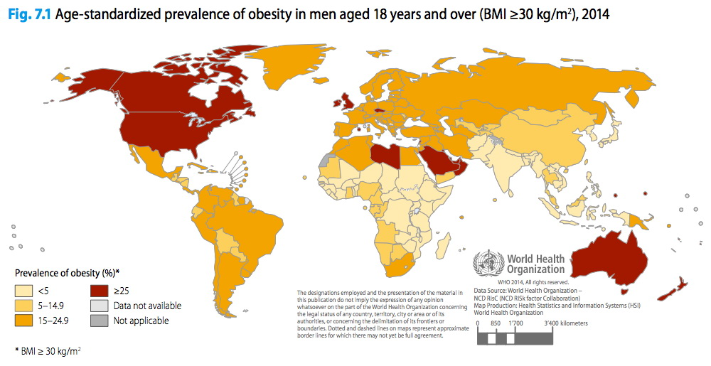 Age-standardized prevalence of obesity in men aged 18 years and over