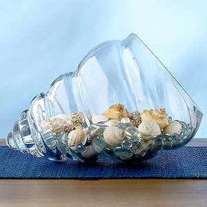 Centro con conchas y caracolas