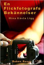 En annan erotisk bok
