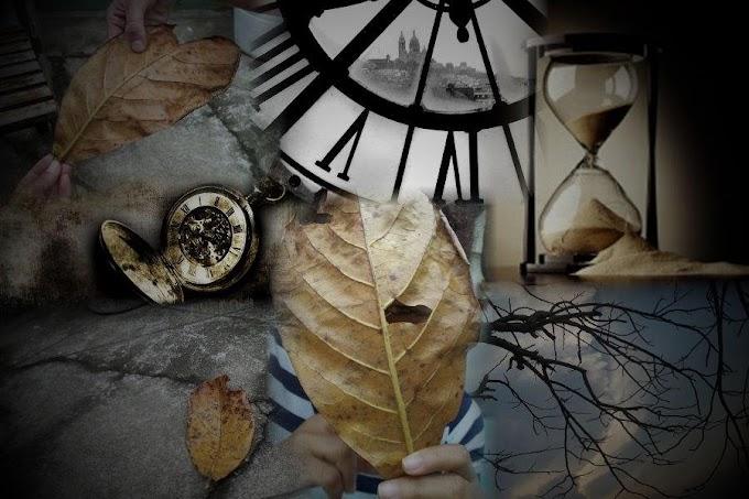 O tempo tema da vida do tempo