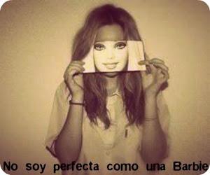 No existe la perfección...