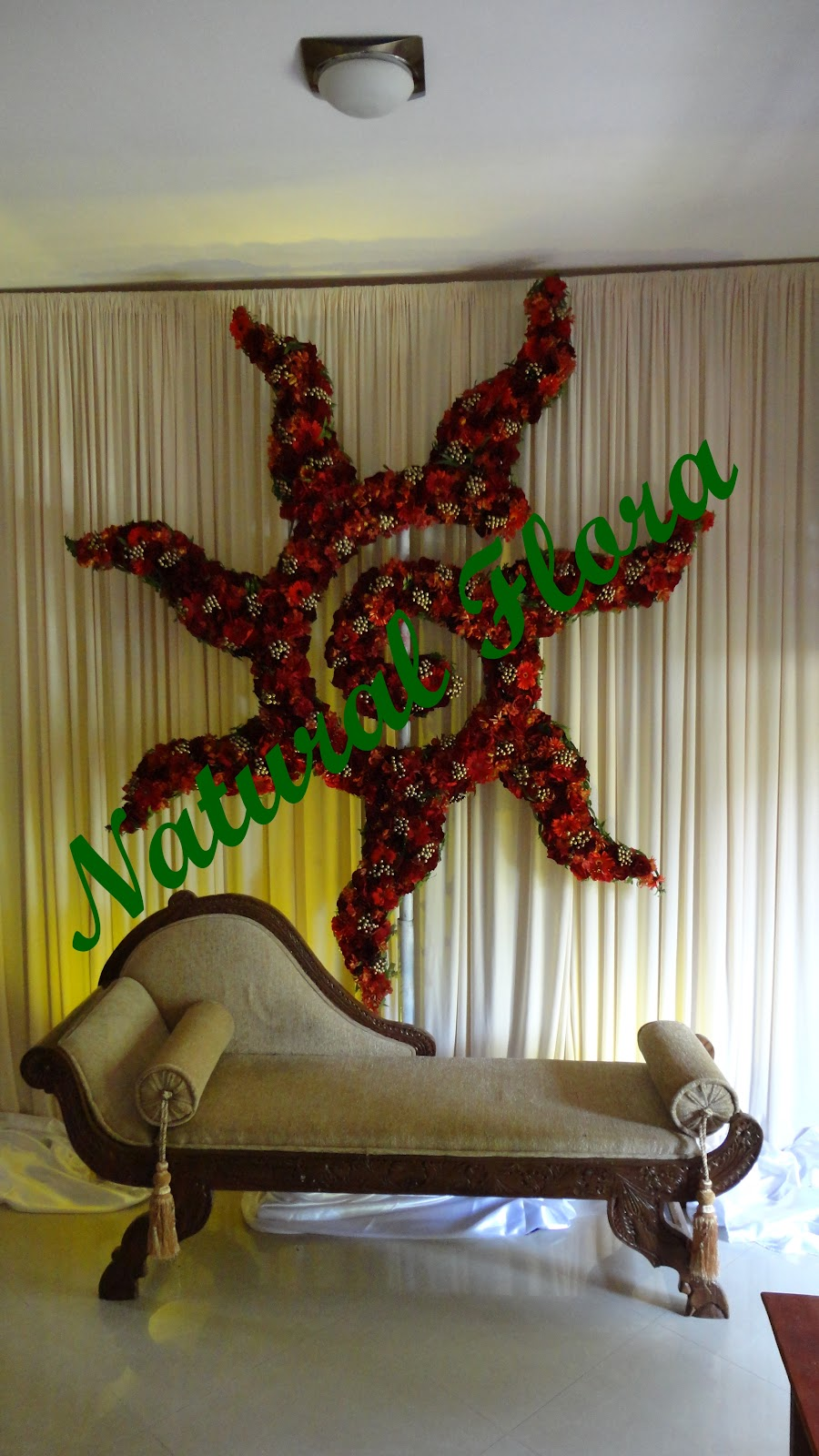 Natural Flora: Natural Flora for Natural Oil Lamp Decorations  110yll