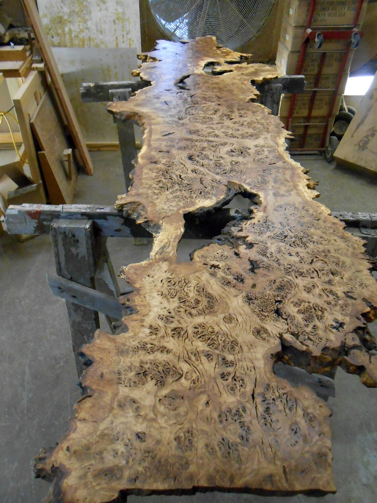 Chronicles Of A Woodworking Apprentice Brown Oak Burl