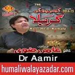 http://www.humaliwalayazadar.com/2014/10/dr-amir-rizvi-nohay-2015.html
