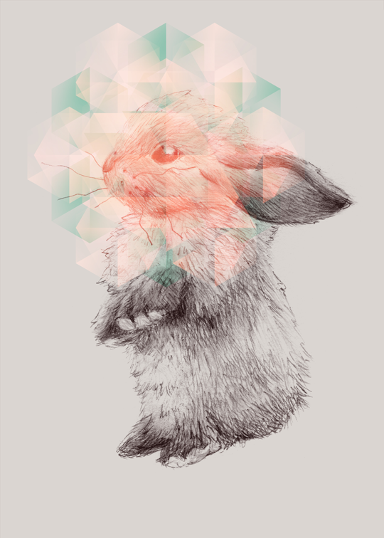 bunny, rabbit, conejo, digital, photoshop, cute