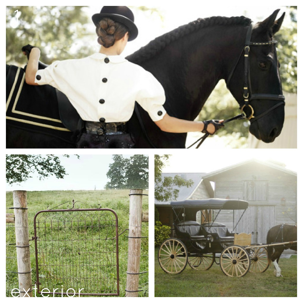 book report all the king s horses Search the largest online horse marketplace with a wide selection of horses for sale at equinecom  10,000 horses per year, all  the `report ad ` link more.