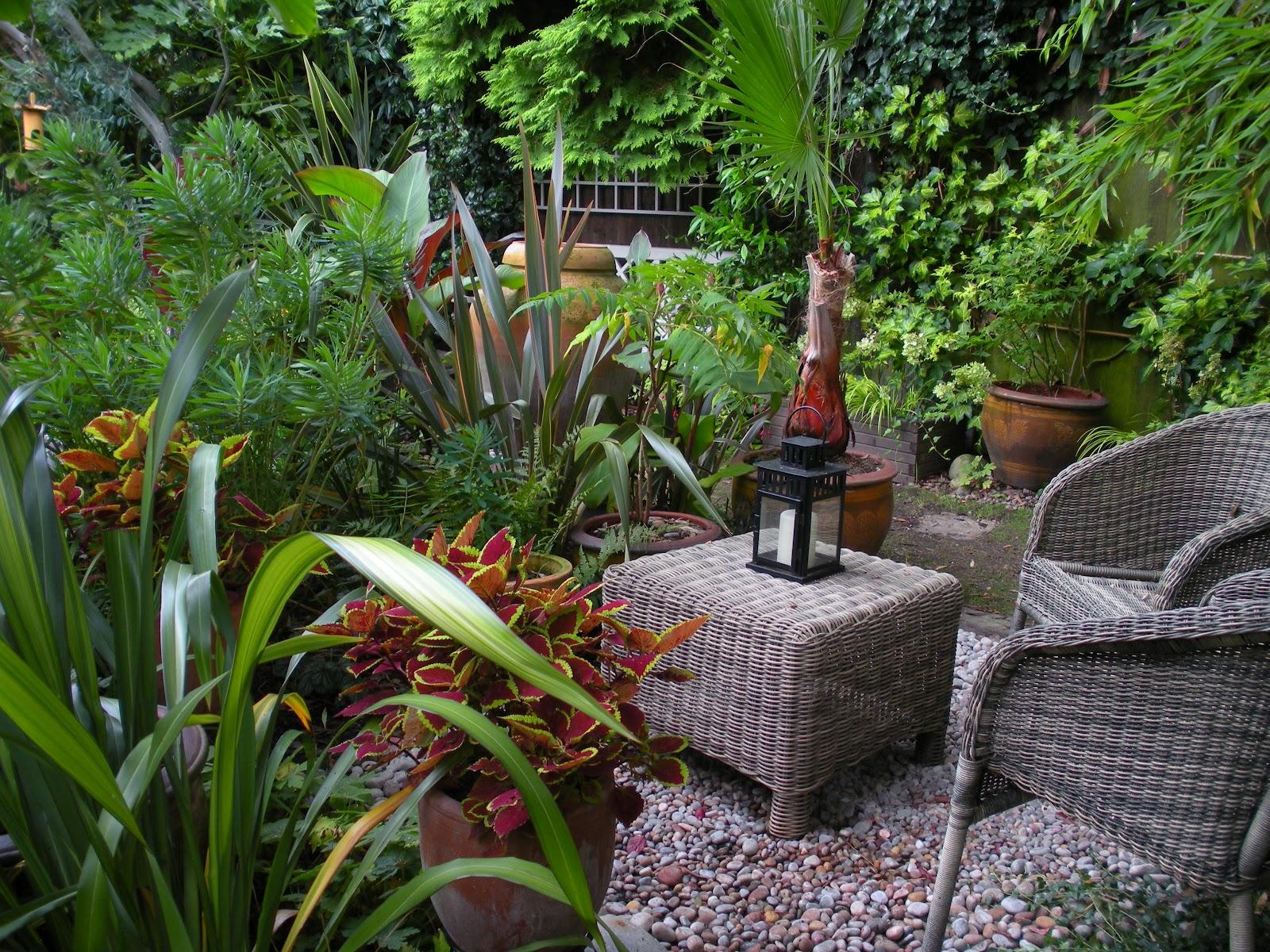 victoria u0027s backyard you know it u0027s garden open day when