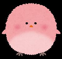 丸い鳥のイラスト「薄ピンク」
