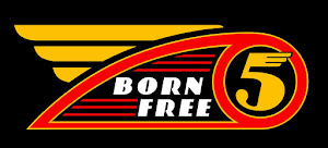 Born-Free 5