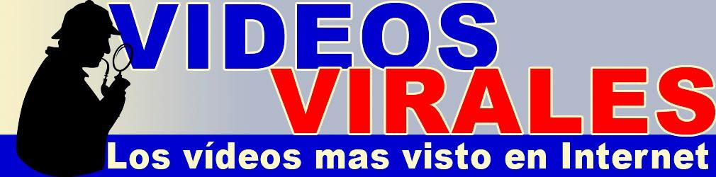 Vídeos virales en internet