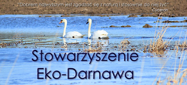 Eko-Darnawa