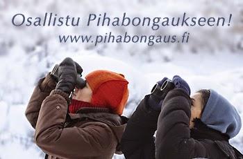 http://www.pihabongaus.fi/