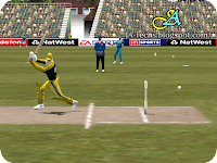 EA Sports Cricket 2002 Screenshot 6