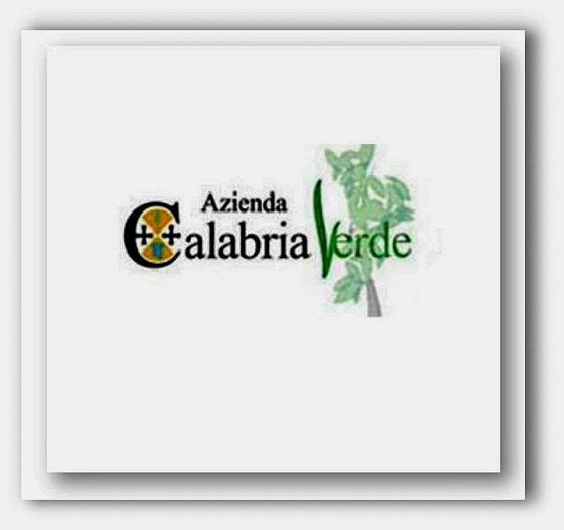 LA NUOVA AZIENDA DELLA REGIONE CALABRIA