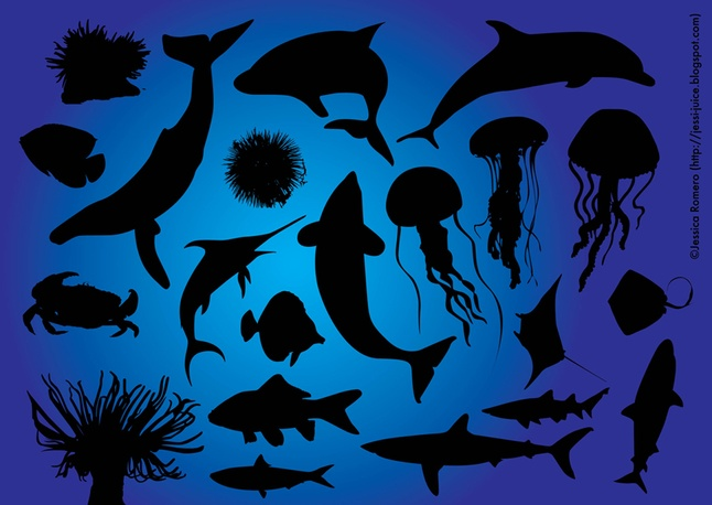Sea Fish Free Vectors Silhouettes Graphics