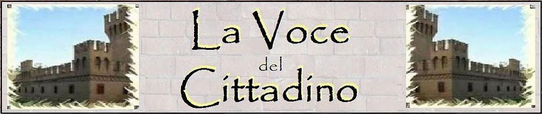 LA VOCE DEL CITTADINO (Bologna e Provincia)