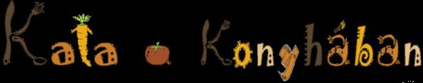 Kata a Konyhában