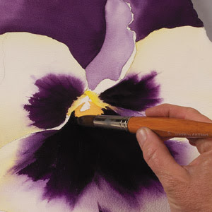 Painting a pansy step by step for How to paint watercolor flowers step by step