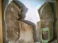 calco di una orma umana datata prima della nascita ufficiale dell'uomo