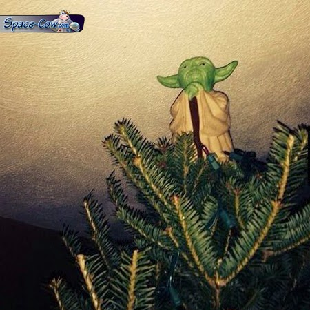 funny things Yoda picture
