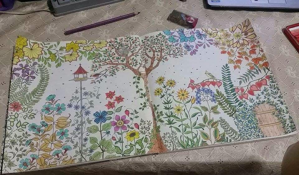 fotos do livro jardim secreto : fotos do livro jardim secreto:Acabei ganhando o Jardim Secreto, da Johanna Basford. Ele é