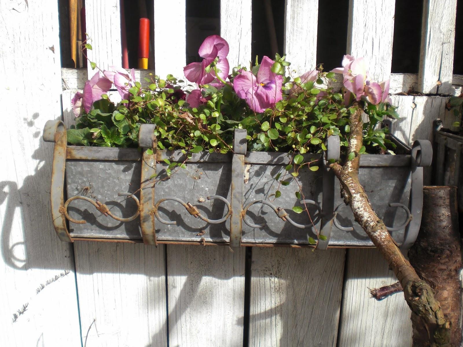 Altankasse med blomster.