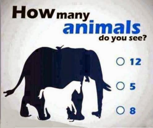 how-many-animals-do-you-see