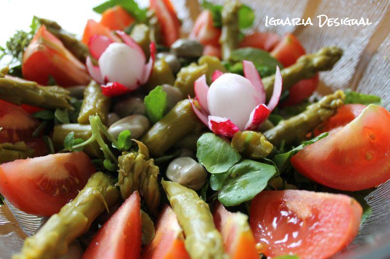 Saladas+de+Verão