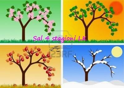 sal 4 stagioni Lk