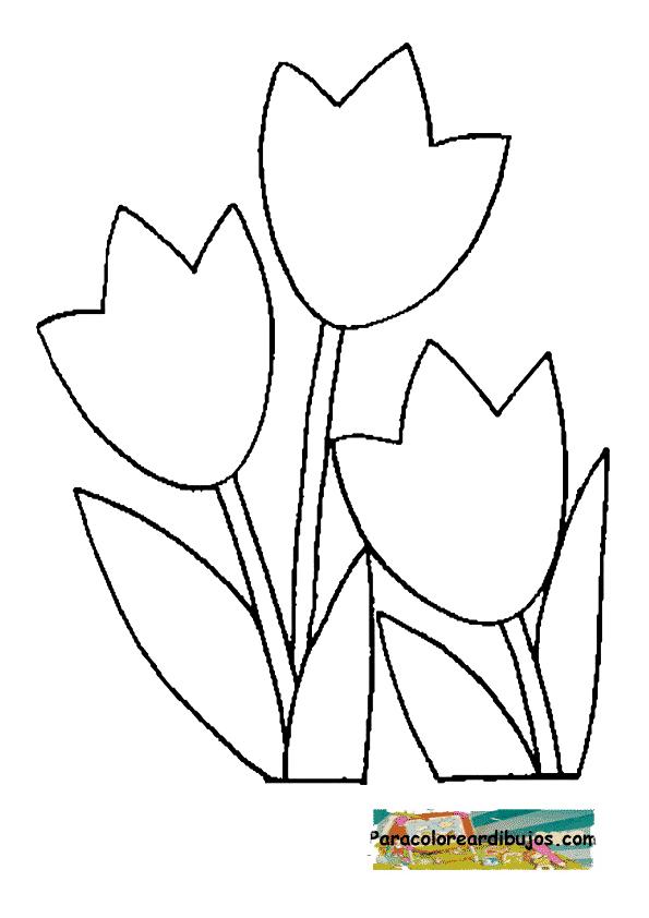 flores faciles para colorear
