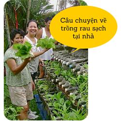 https://sites.google.com/site/tuvantrongrausach/cau-chuyen-ve-trong-rau-sach-tai-nha