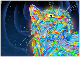 picture of a psychedelic cat