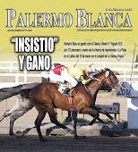 """Revista Palermo Blanca - HARLAN'S BLUE -  """"INSISTIO"""" Y GANO"""
