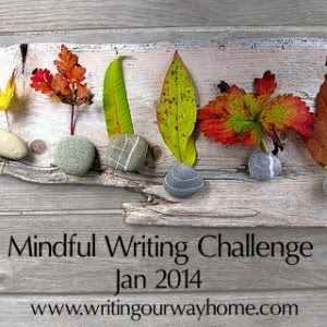 Mindful Writing Challenge January 2014