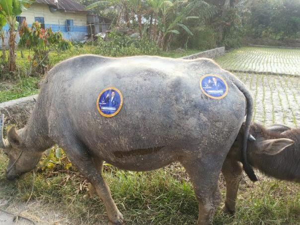 Partai Horbo Manggagat ( PHM )