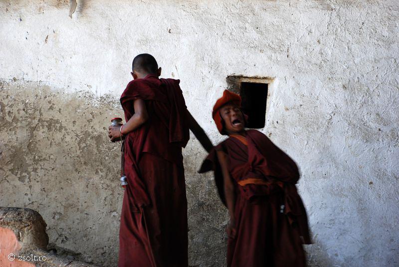 Young Tibetan Buddhist Monks Having Fun