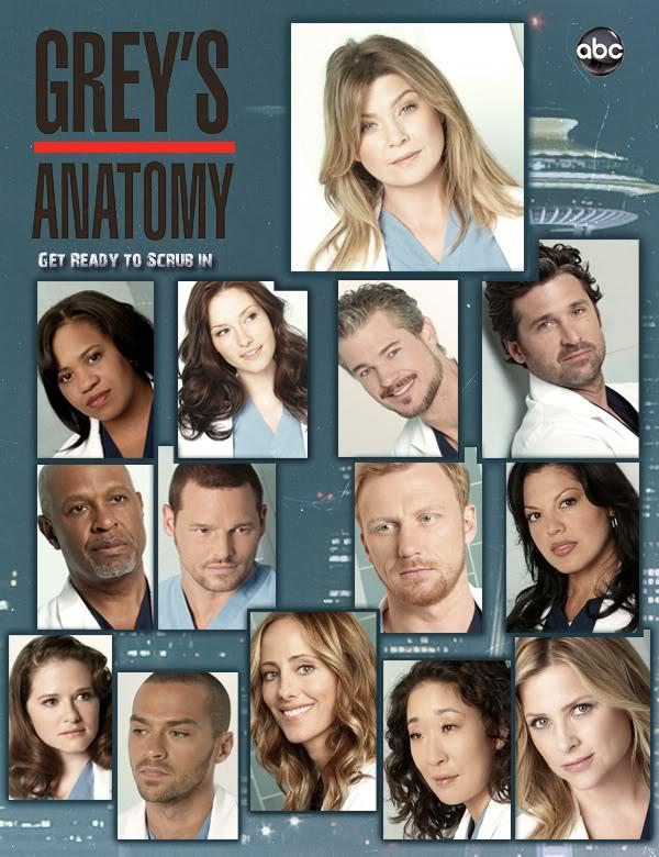 Greys Anatomy S08E04 HDTV NL Subs DutchReleaseTeam