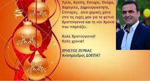 ΧΡΗΣΤΟΣ ΖΕΡΒΑΣ (Αντιπρόεδρος ΔΟΠΠΑΤ)