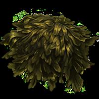 Alghe marine viscide