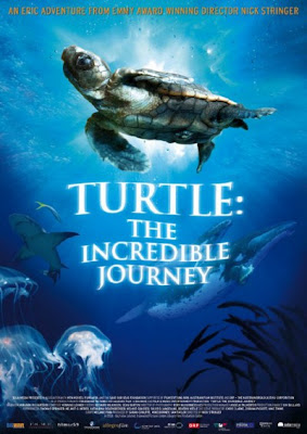 Hnh Trnh V i Ca Loi Ra Vietsub - Turtle The Incredible Journey Vietsub - 2009 