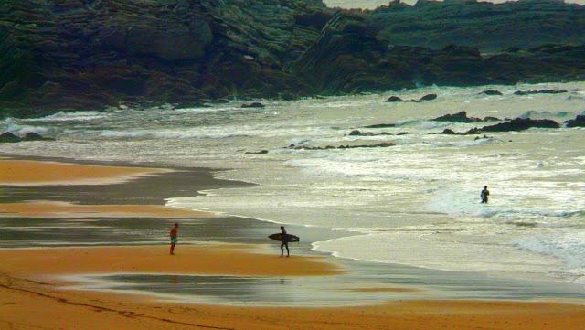 surfista sopela