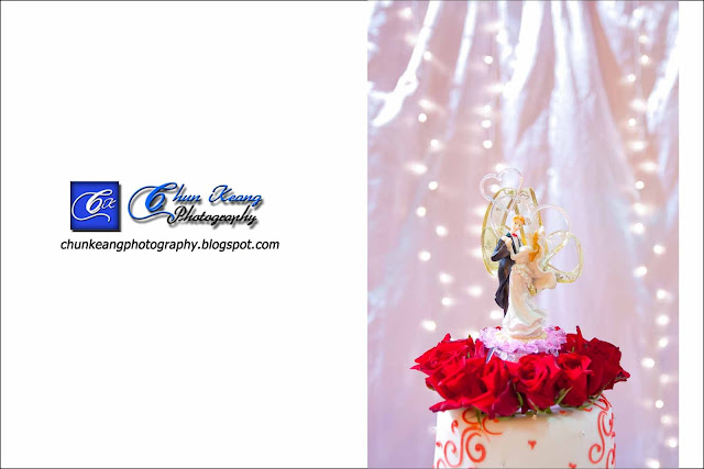 Freelance, Indian engagement ceremony photography, Masyarakat penyayang, Penang indian wedding photographer, photography price, Wedding photographer in penang, Wedding reception, Indian wedding photo
