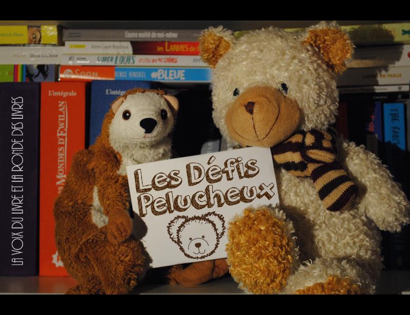 http://lavoixdulivre.blogspot.fr/2015/02/les-defis-pelucheux-le-coup-denvoi.html