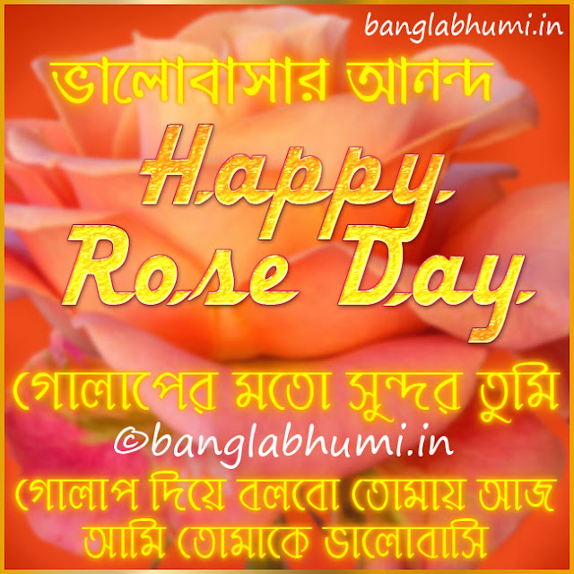 Happy Rose Day Bengali Wishing Wallpaper Free