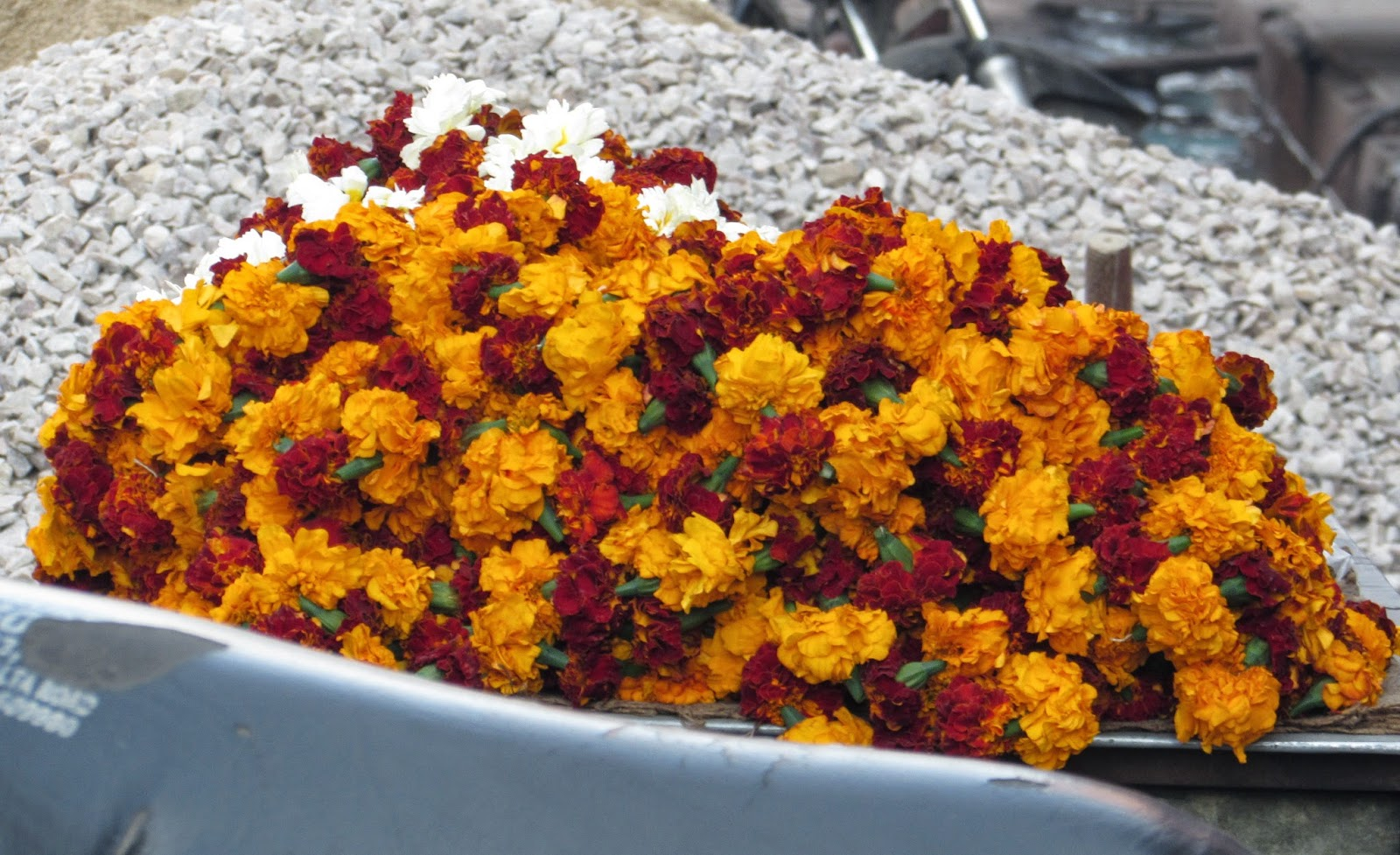 About India Marigolds India Connections