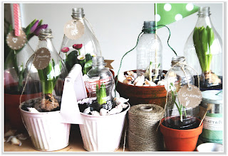 Gewächshäser aus PET Flaschen Upcycling