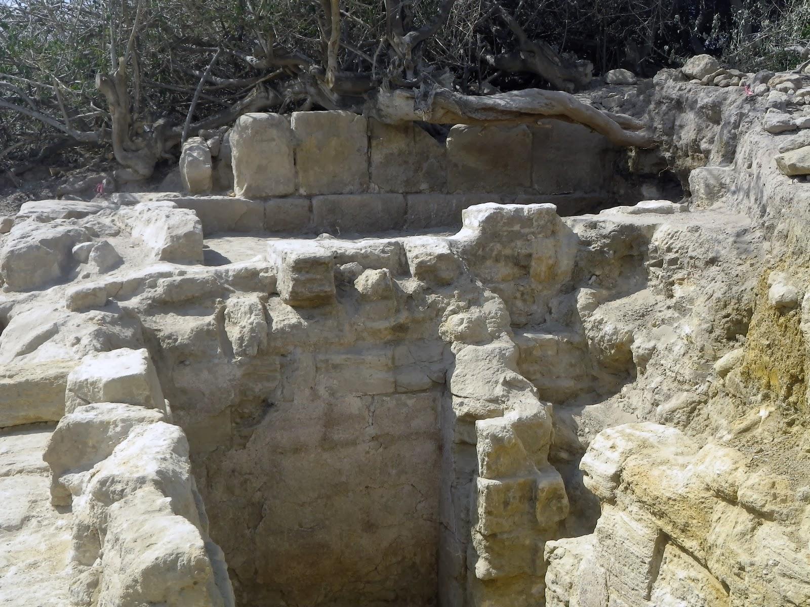 Start of Season 9 of Tall el-Hammam Excavation