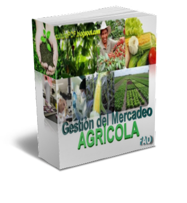 Gestion Del Mercadeo Agricola