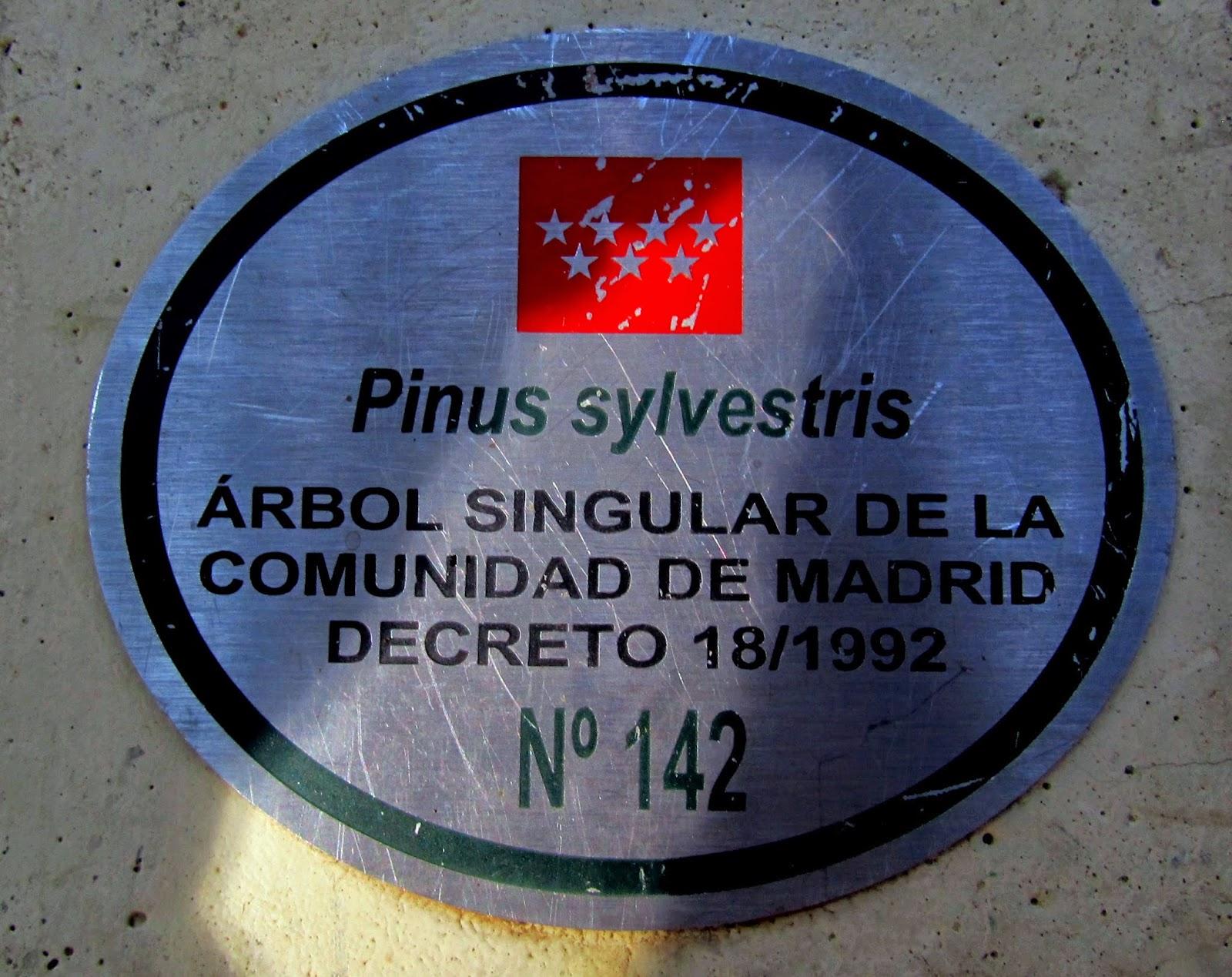 MTB en Calvario y Mirador de las Canchas con Alfonsoyamigos